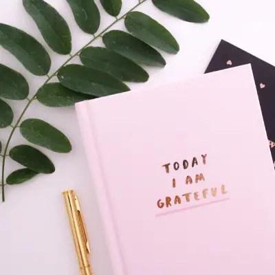 Explore Gratitude