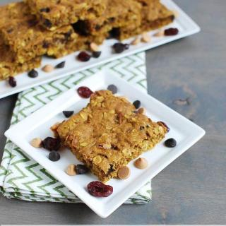 Pumpkin Cranberry Oat Bars