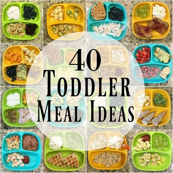 Looking for healthy toddler meals to feed your kid? Here are 40 ideas for breakfast, lunch and dinner to help inspire you if you're stuck in a rut!