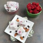Frozen Yogurt Bites 1