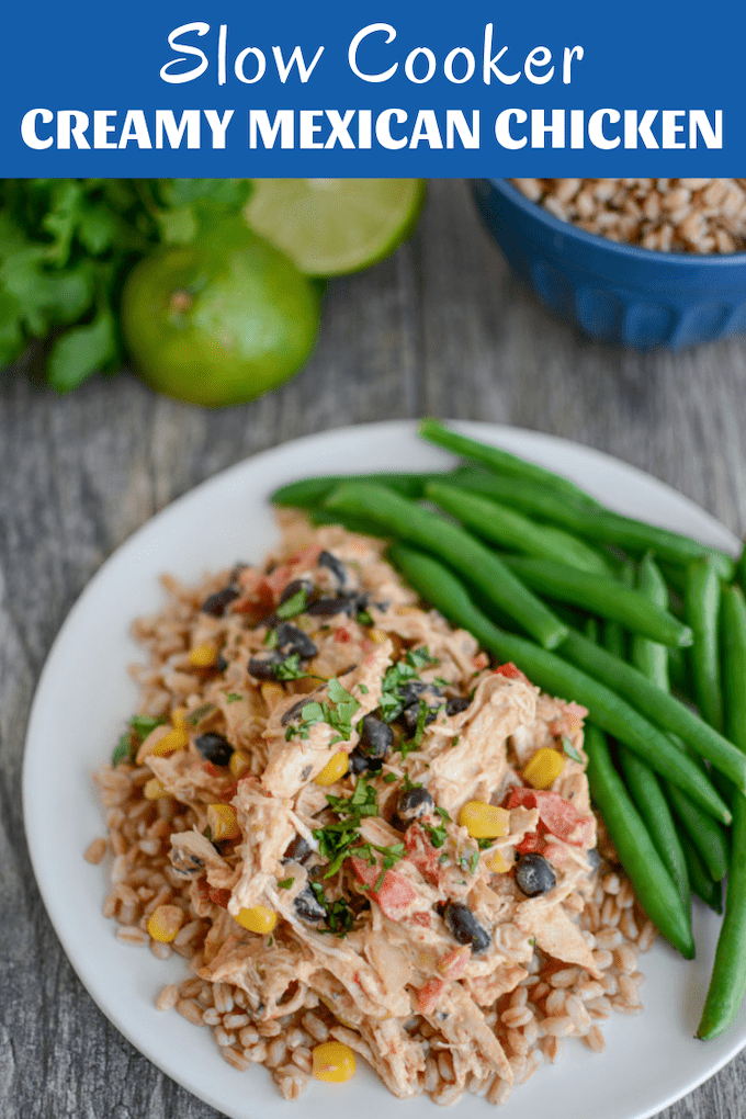 This Slow Cooker Creamy Mexican Chicken makes a quick, easy dinner or freezer recipe. Made with simple ingredients but full of flavor, it's great on its own or served over rice, farro or cauliflower rice.