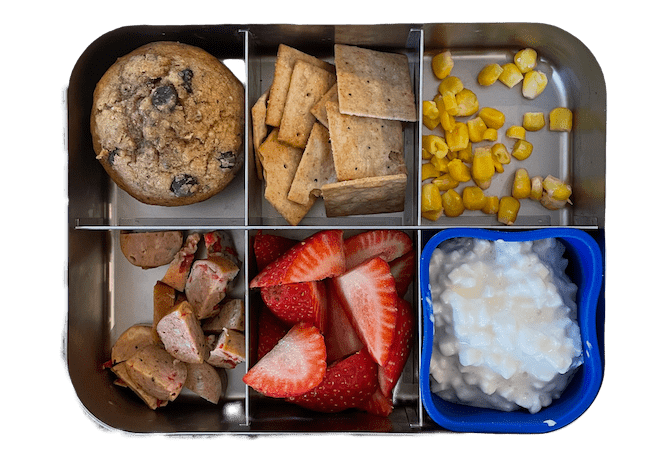 lunch box with muffin, chicken sausage, strawberries, cottage cheese and crackers