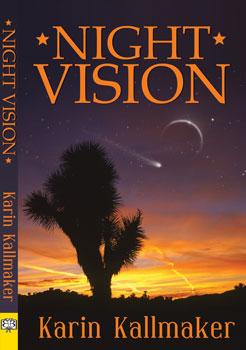 Night Vision by Karin Kallmaker, Lesbian Books