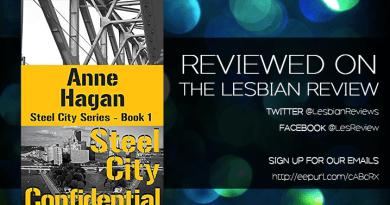 Steel City Confidential by Anne Hagan