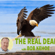 Eagle landing on success