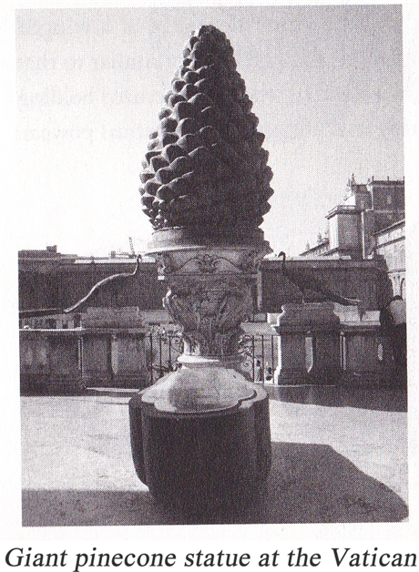 giant-pinecone-460