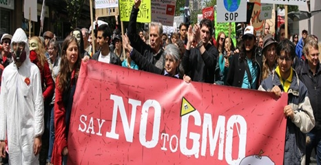 March-against-monsanto-466