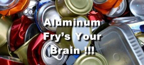 Aluminum fries your brain
