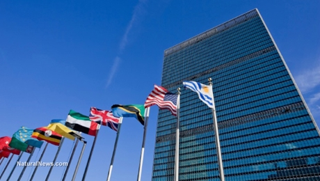 United-Nations-Building-Flags-460