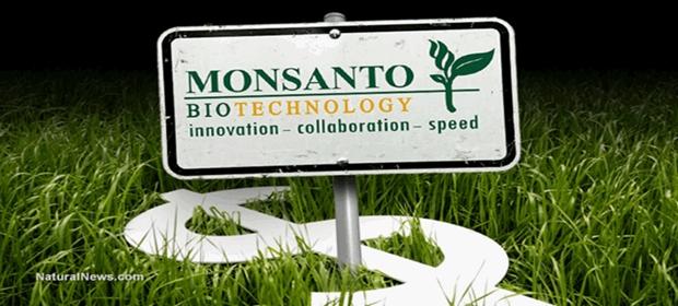 Monsanto-Money-Crops sept 7