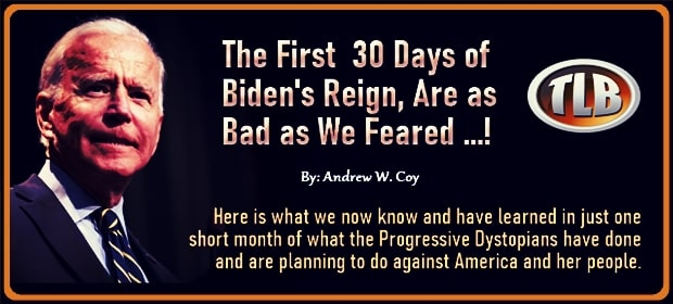 The First Thirty Days of Bidens Reign Are as Bad as We Feared – FI 02 21 21-min