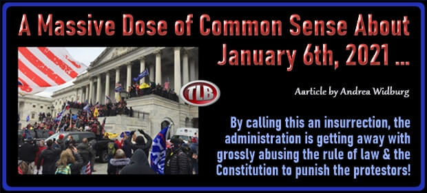 A Massive Dose of Common Sense About January 6th 2021 – FI 08 10 21-min