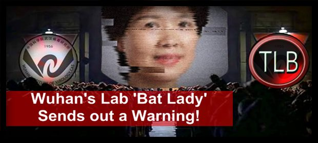 Bat Lady C19 ZH feat 8 7 21