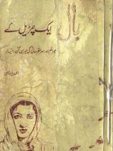 Bal Ek Churail Ke by Ahmed Yaar Khan Pdf