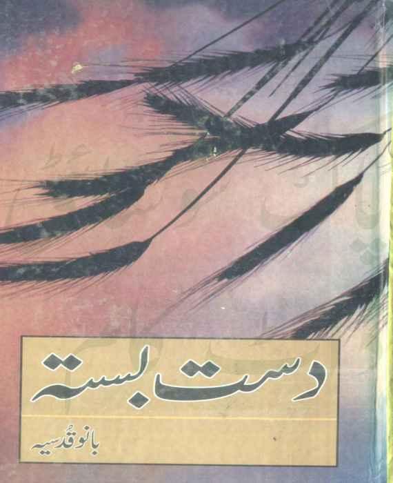 Dast basta by bano qudsia pdf free download the library pk for Bano qudsia books