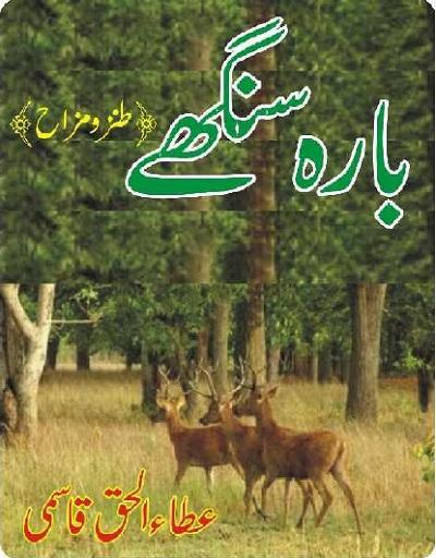 Barah Singhay By Ata Ul Haq Qasmi Download Pdf
