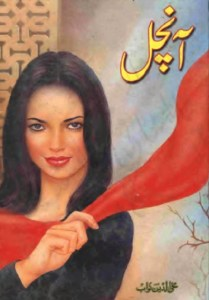 Aanchal Novel By Mohiuddin Nawab Pdf