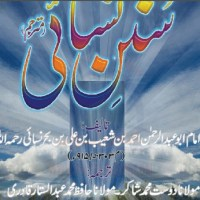 Sunan Nasai Urdu Complete Pdf Download Free