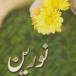 Noreen Novel By Razia Butt Pdf Download