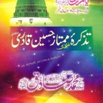 Tazkira Mumtaz Hussain Qadri By Muhammad Dawood Rizvi Pdf