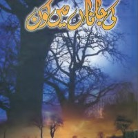 Ki Janan Main Kon Novel By Farhat Shaukat Pdf