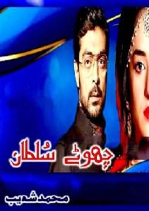 Chotay Sultan Novel By Muhammad Shoaib Pdf Free