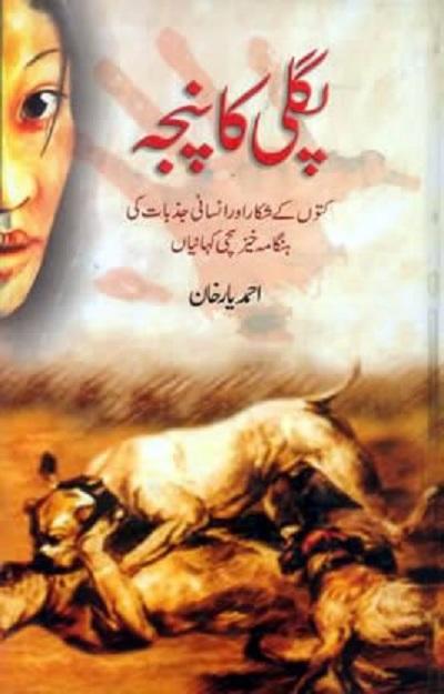 Pagli Ka Panja Novel By Sabir Hussain Rajpoot Pdf