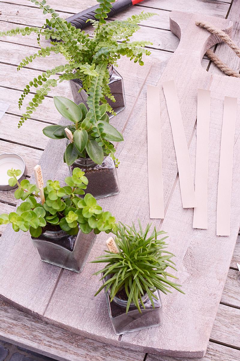 Van kruidenpotje tot plantenhouder