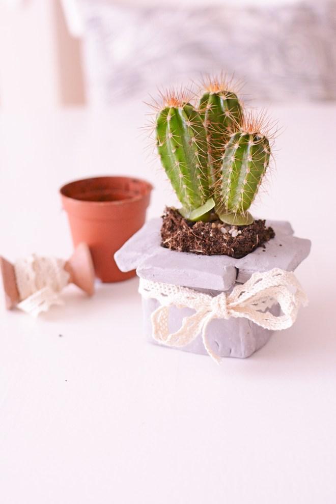 Een cactus in een box (van klei)!