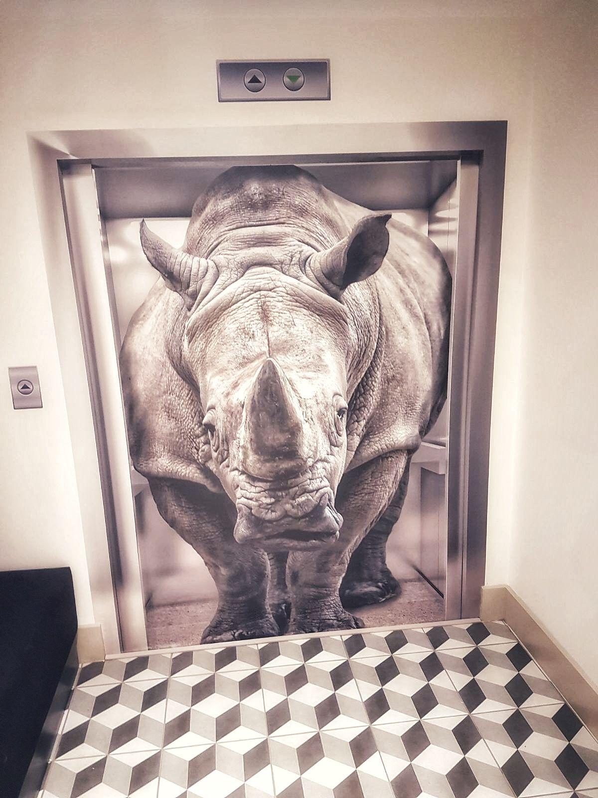 Harben House quirky rhino interior decor