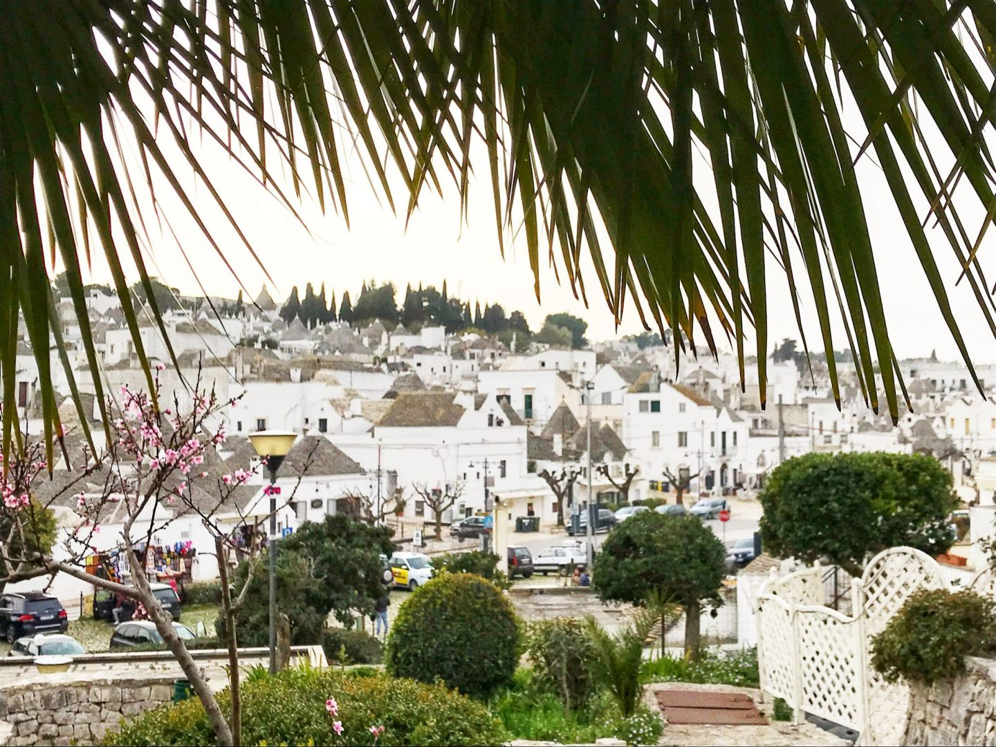 Nature views of Alberobello