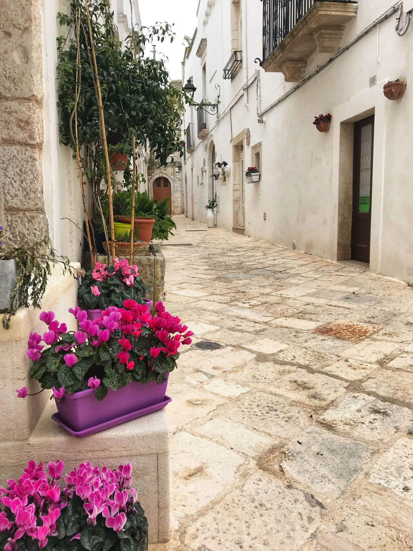 Flower lined streets of Locorotondo
