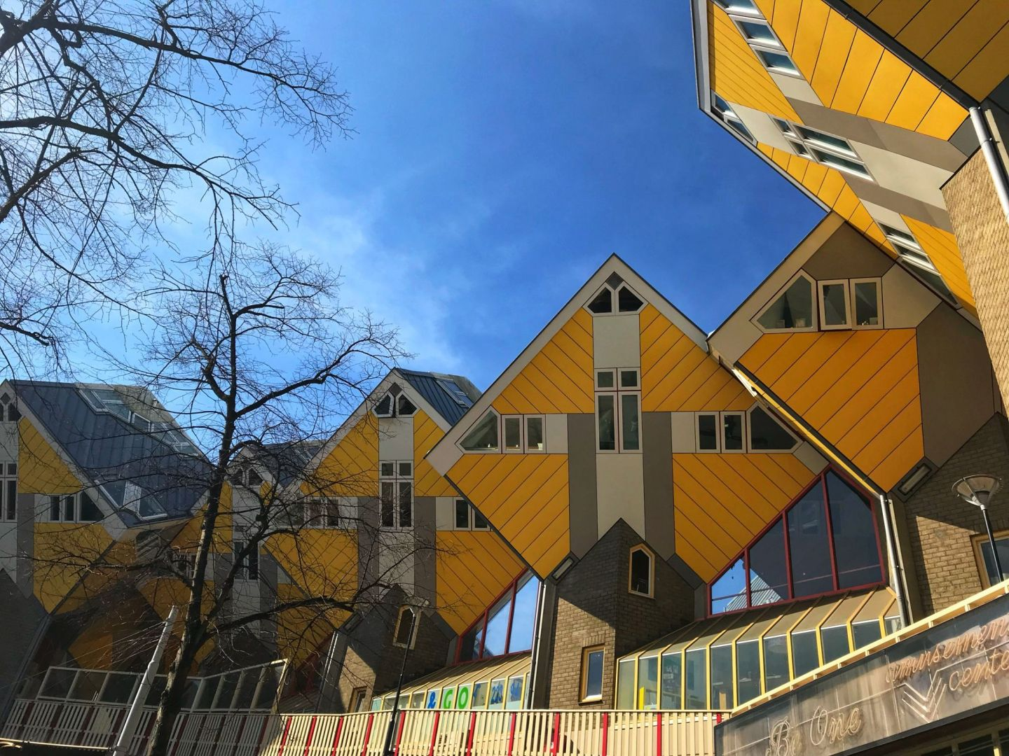 Cube Houses represent trees and collectively a forest