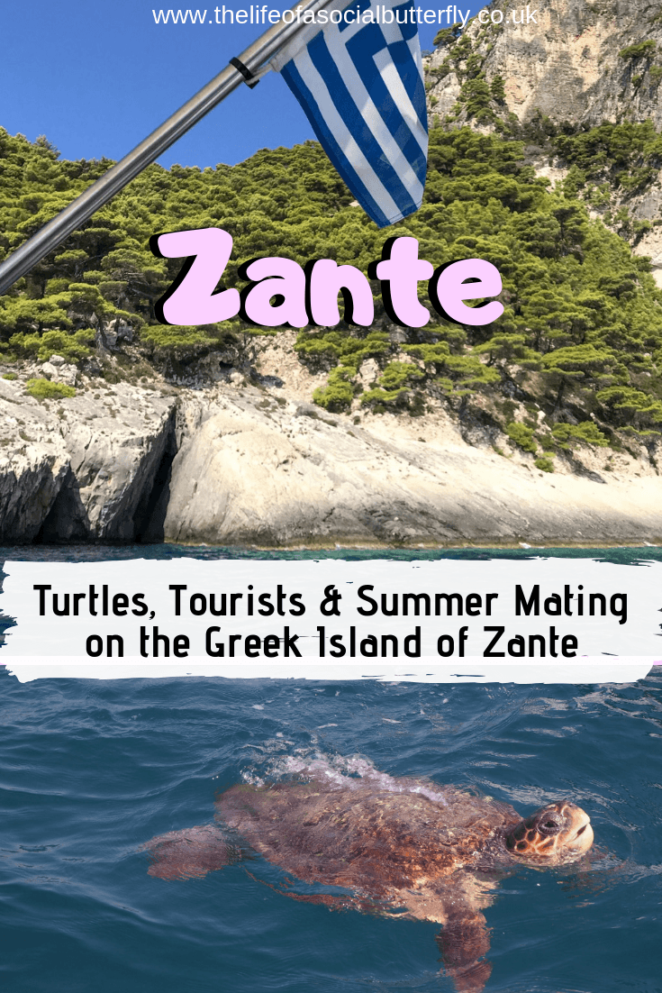 Pinterest Zante Turtles Tourists in Zante
