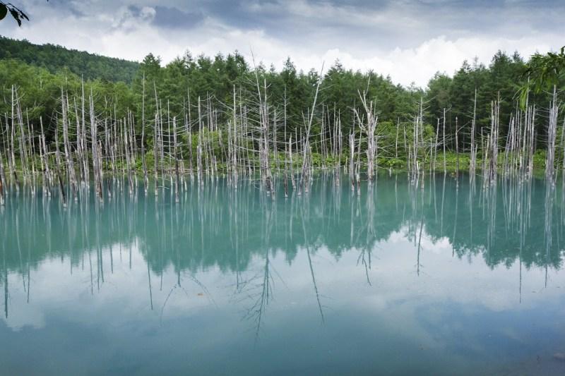 Blue Pond Hokkaido