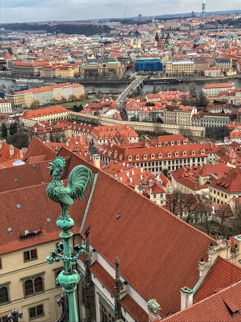 As high as the bird flies - Prague views from St Vitus Cathedral