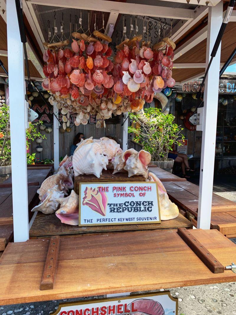 Key-West-Conch-Republic-shell-souvenir
