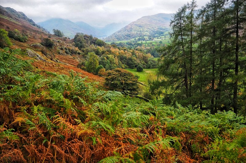 Autumn in Lake District England