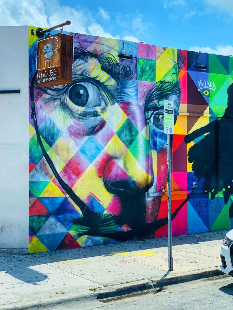 Dali-Kobra-Street-Art-Wynwood-Miami