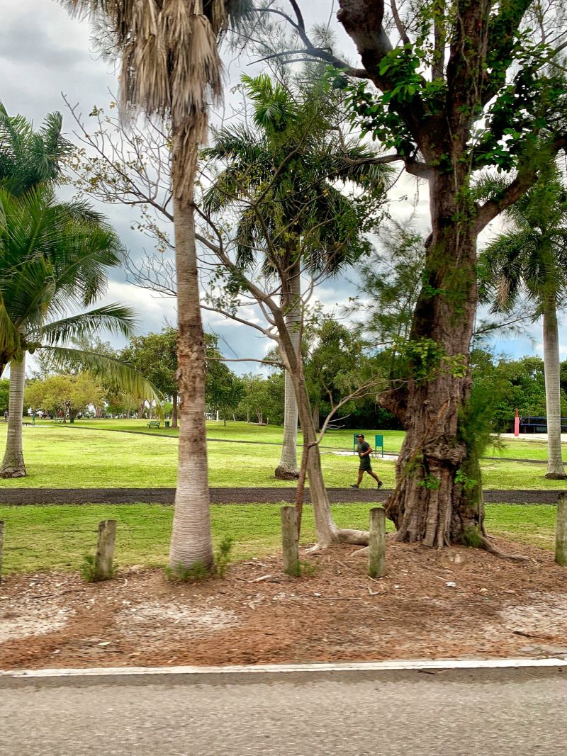 Outdoor-pursuits-David-T-Kennedy-Park-Coconut-Grove-Miami-
