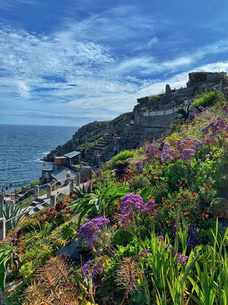 Rowena-Cades-garden-Minack-Theatre-flowers