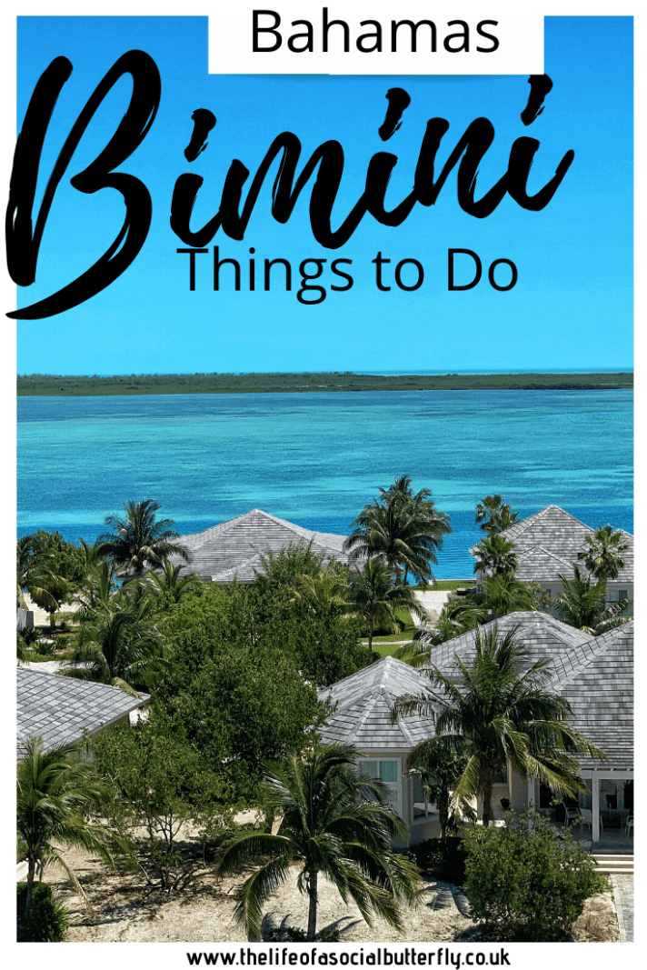 Bimini Bliss - Experience Paradise, the mystery & intrigue of Bimini for the day. A roundup of things to do in Bimini: swim with wild dolphins, dive the underwater road, explore Alice Town and relax on Bimini's white sand beaches. #biminibliss #biminithingstodo #thingstodoinbimini #biminibahamas