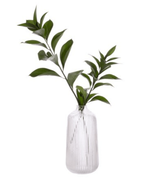 Clear fluted Tall vase