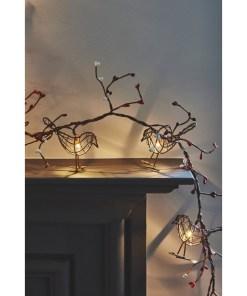 robin christmas lights