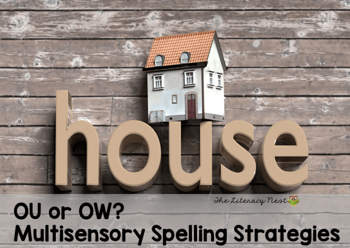 OU or OW spelling strategies