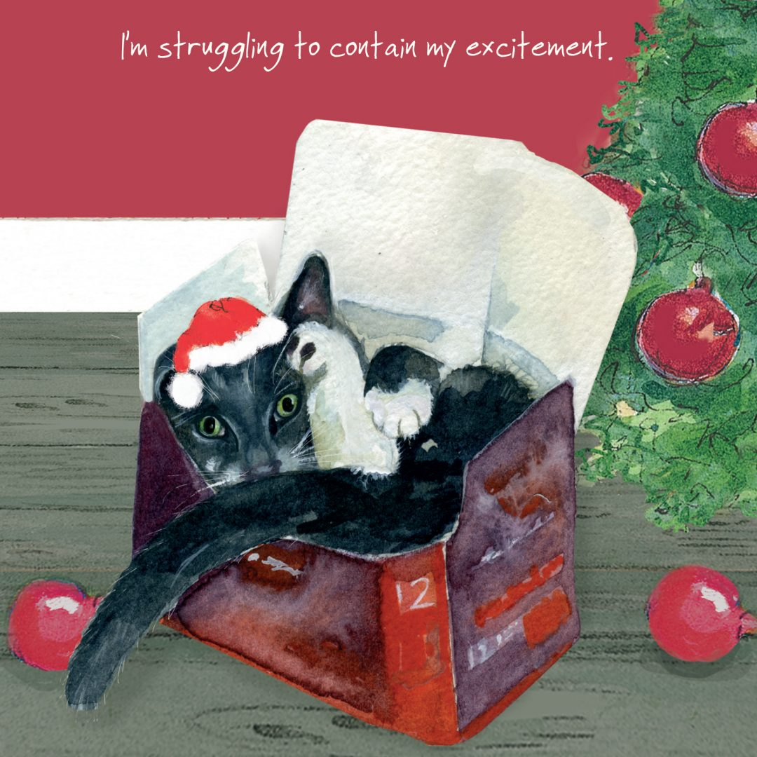 Cat Christmas Card Struggling The Little Dog Laughed