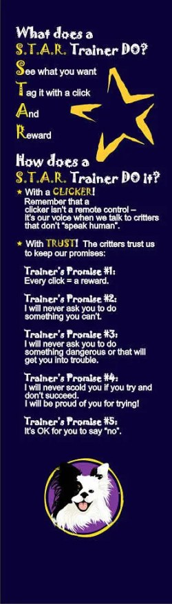The Trainer's Promise