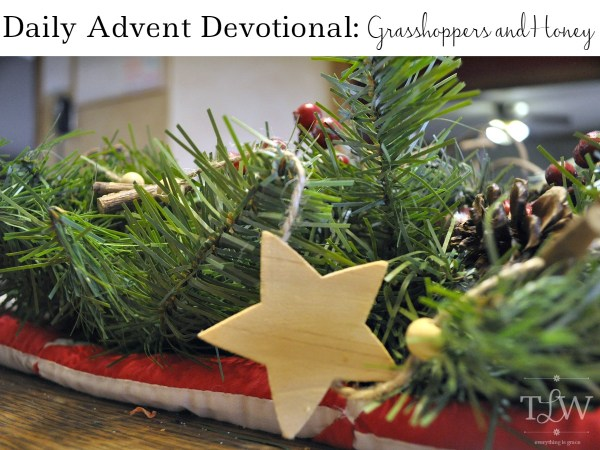 Daily Advent Devotional 16 • The Littlest Way
