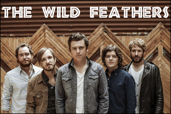 TheWildFeathers