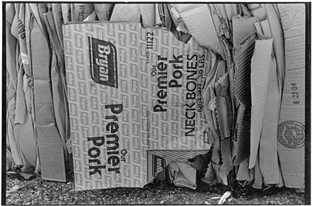 Neckbones Boxes, 1994. Photograph by Newt Rayburn.